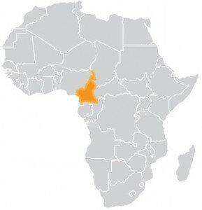 map-rep-cam