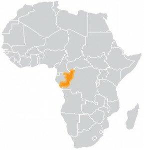 map-rep-con
